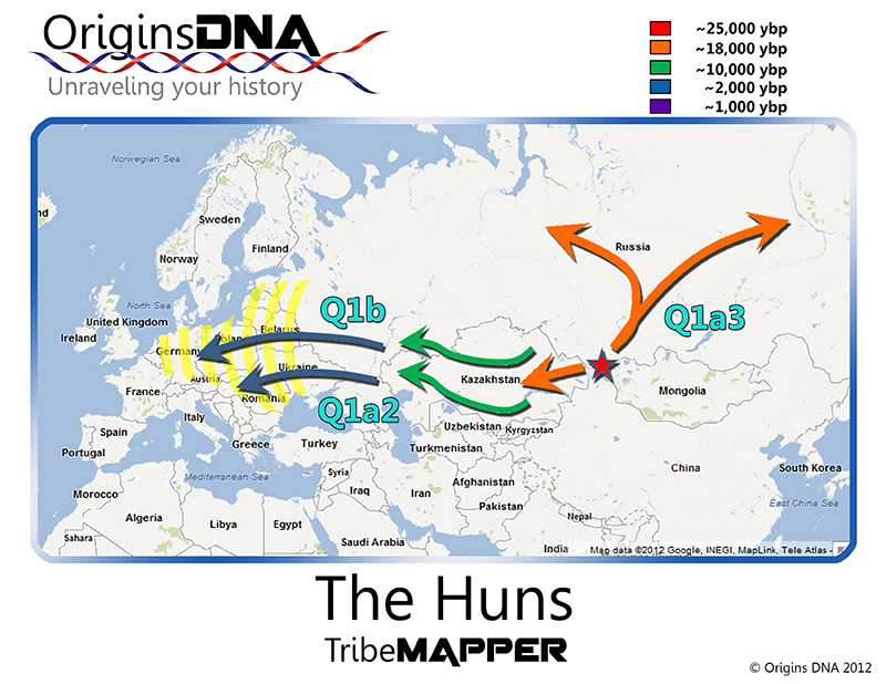 Haplogroup Q, and the Huns « Cradle of Civilization